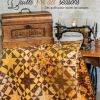 Couverture Quilts for all Seasons betsy Chutchian