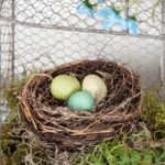 Bonnie Sullivan – What once was old – eggs